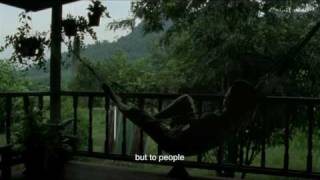 Lung Boonmee Raluek Chat - Uncle Boonmee... | Trailer Cannes 2010 IN COMPETITION