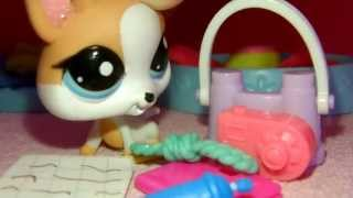 Littlest Pet Shop: Die Zauberer im Internat #2