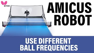 How to Use Different Ball Frequencies with Richard Prause   AMICUS Training Tips Series