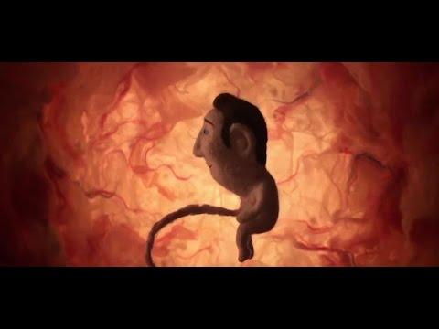 Edmond - NOWNESS   short film
