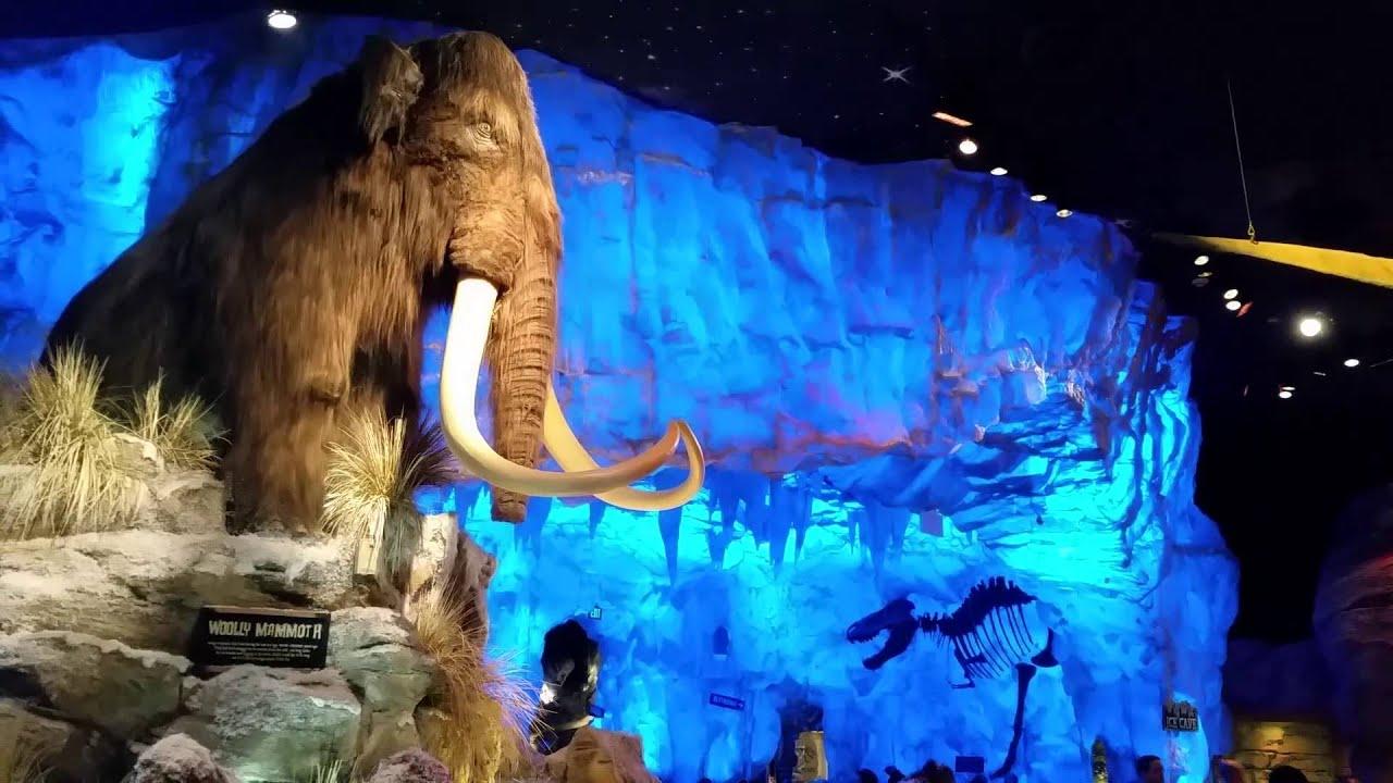 Disney spring 39 s t rex restaurant mammoth youtube for Restaurant t rex