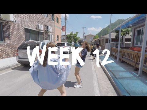 PYEONGCHANG // EXCHANGE WEEK 12