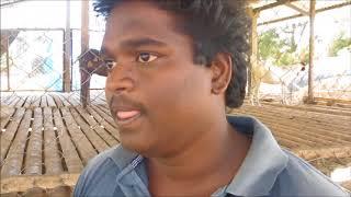 Goat Farming -Experience of a Young Engineer part- 6[ஆட்டு பண்ணை நஷ்டத்திற்க்கான  காரணங்கள் ]
