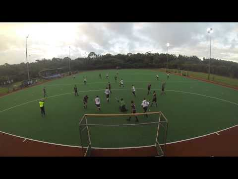 2013 Whitford Hockey Club Mens 1's Round 2 v Lakers - Goals