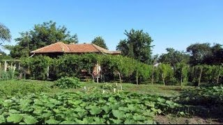 One bed detached property for sale near General Toshevo, Bulgaria. 30 min to beach