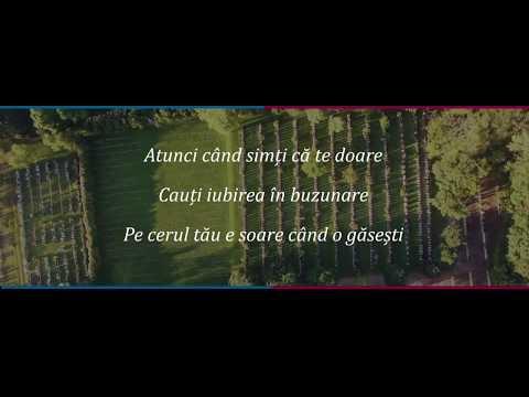 Ioana Ignat x Edward Sanda - In Palma Ta (ver.karaoke [lyrics])
