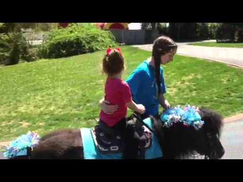 Cates pony ride at Play Groups