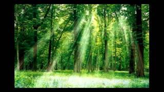 Красивая музыка - Красота природы  САМЫЙ ОФИГЕННЫЙ КЛИП ПРИРОДА
