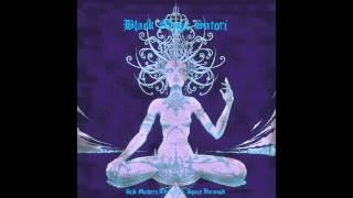 Acid Mothers Temple and Space Paranoid-Black Magic Satori