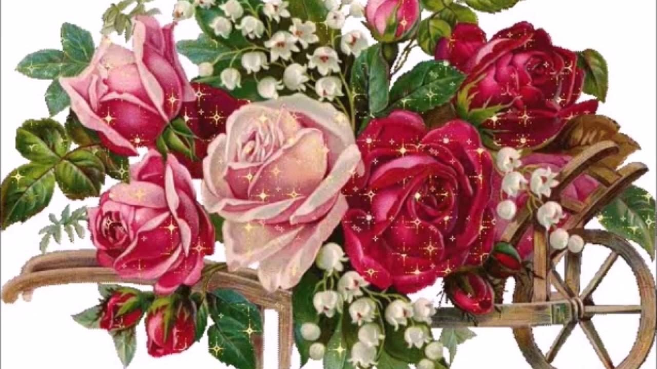 Vídeo De Bom Dia Com Lindas Flores De Fundo Para Enviar: Lindas Mensagens Para Os Amigos Do