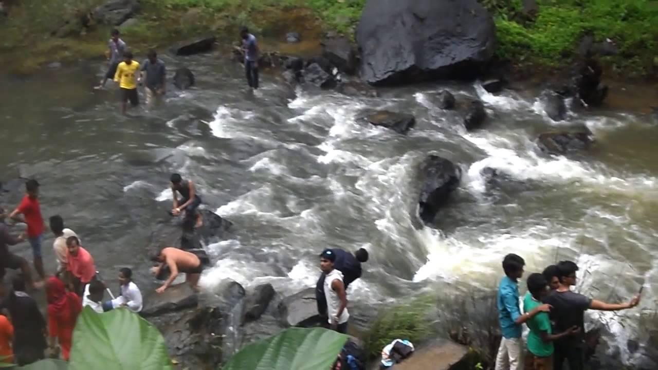 Abbey Falls  Abbi Falls  - Madikeri  Coorg