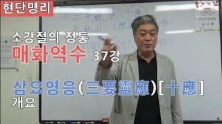 [현단명리] 매화역수 37강 삼요영응(三要靈應)