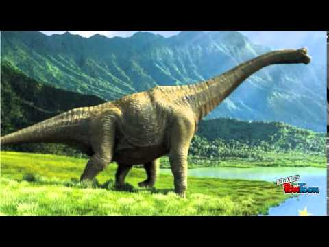 At 8 Is Dinosaurs How They Lived And Evolved