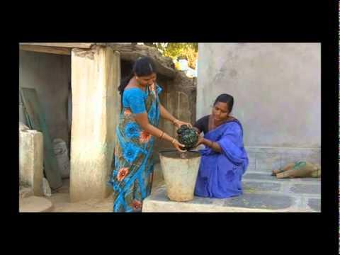 Preparation of SRI Nursery Bed- Telugu - SERP - Mahubnagar - Andhra ...