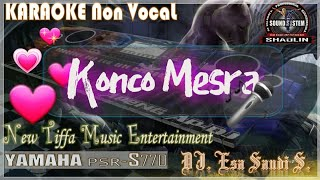 Download Mp3 Konco Mesra Karaoke Tanpa Vokal - Tiffa Music Entertainment