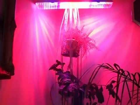 Foco led indoor max 120 youtube - Led para cultivo interior informacion ...