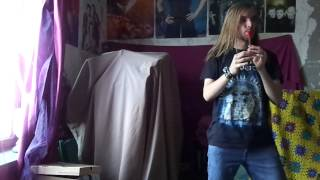 Eluveitie - Uxellodunon (tin whistle cover)