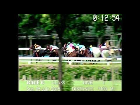 Danthai NewSeason # ม้าแข่งสนามฝรั่ง 5 กรกฏาคม 58 เที่ยว 6 ชั้น  1