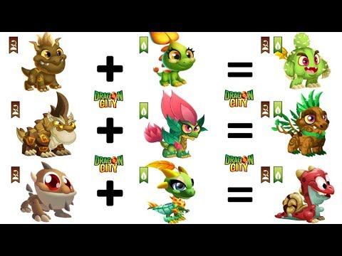 Breed an Egg that has TERRA and NATURE | Dragon City Gameplay 😍