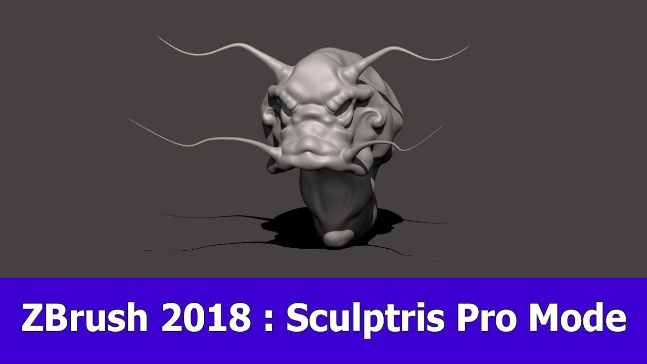ZBrush 2018 Sculptris Pro Feature