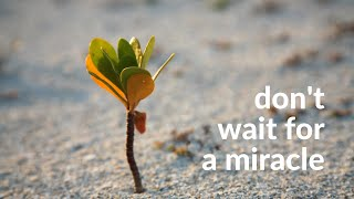Don't wait for a miracle
