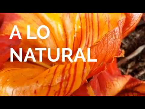 A lo natural