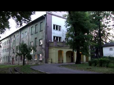 Bedzin: A Small Town Near Auschwitz
