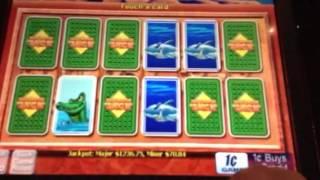 voodoo vixens slot machine