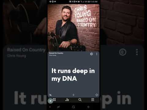 Chris Young - Raised On Country (Official Lyric Video)