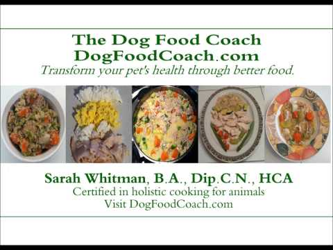 Vet Recommended Homemade Dog Food