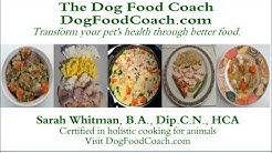 Vet Recommended Homemade Dog Food