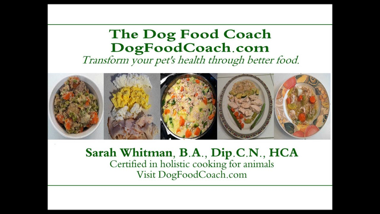 Vet recommended homemade dog food youtube - Cuisine r evolution recipes ...