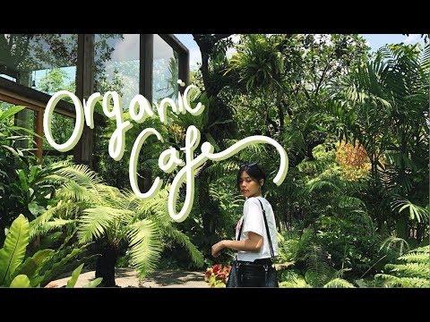 Organic Cafe Vlog : คาเฟ่ลับในป่าใจกลางเมือง!