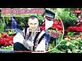 Download Alin Stoica 2018 - Petrecere Vrâncenească - Album Live (Colaj Etno și Muzică De Petrecere 2018)