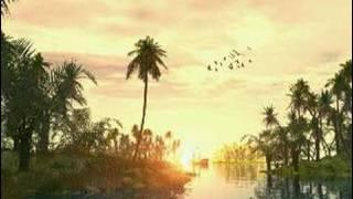 Soothing Quran Recitation From Taraweeh