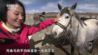 [远方的家]大好河山 横断山——童话世界九寨沟| CCTV中文国际