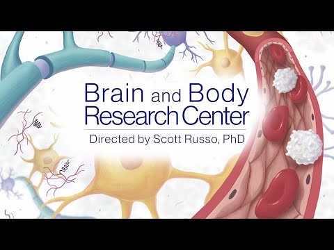 Mount Sinai Launches the Brain and Body Research Center, Among the First in the U.S.