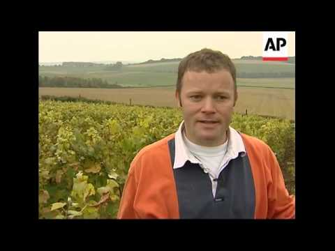 Champagne expert applies French techniques to 'English sparkling wine'.