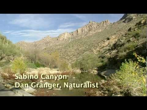 Sabino Canyon, Tucson Arizona