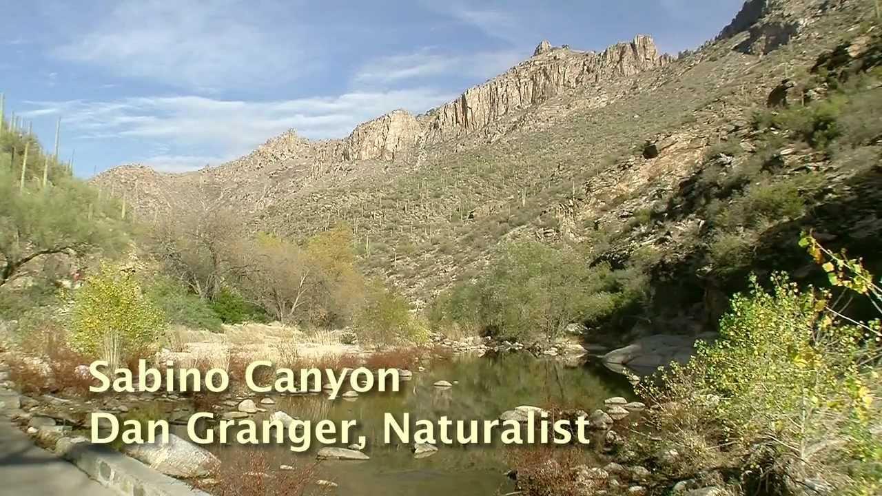 Sabino Canyon Tucson AZ