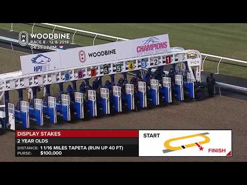 Awesome Again's Sir Winston Wins Display Stakes