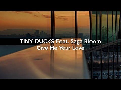 [Lyric Video] TINY DUCKS feat. Saga Bloom - Give Me Your Love (Radio Edit)