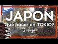 JAPON TOKIO 2020 🍣😲 5 cosas imperdibles que hacer en Tokio   Como viajar a Japon #1