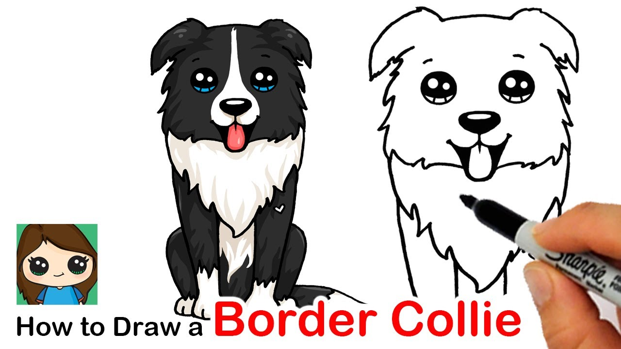 How To Draw A Border Collie Puppy Dog Easy Youtube