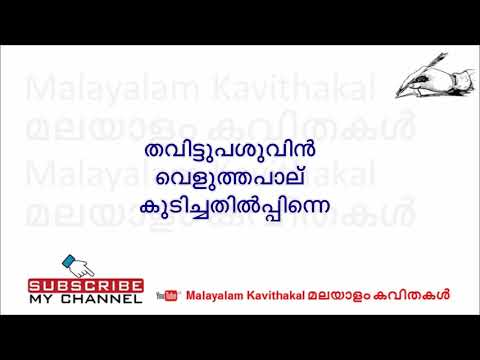 Neelakasham Peeli Vidarthum Lyrics | നീലാകാശം പീലികള്