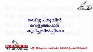 Neelakasham Peeli Vidarthum Lyrics   നീലാകാശം പീലികള്