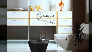 젬마(Gemma) / A&X(알마니) - 하이그…