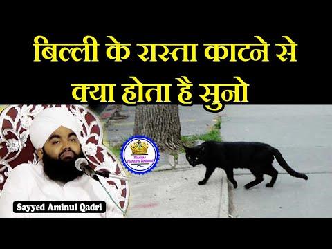 Billi Ke Rasta Katne Par Kya Hota Hai   Sayyed Aminul Qadri