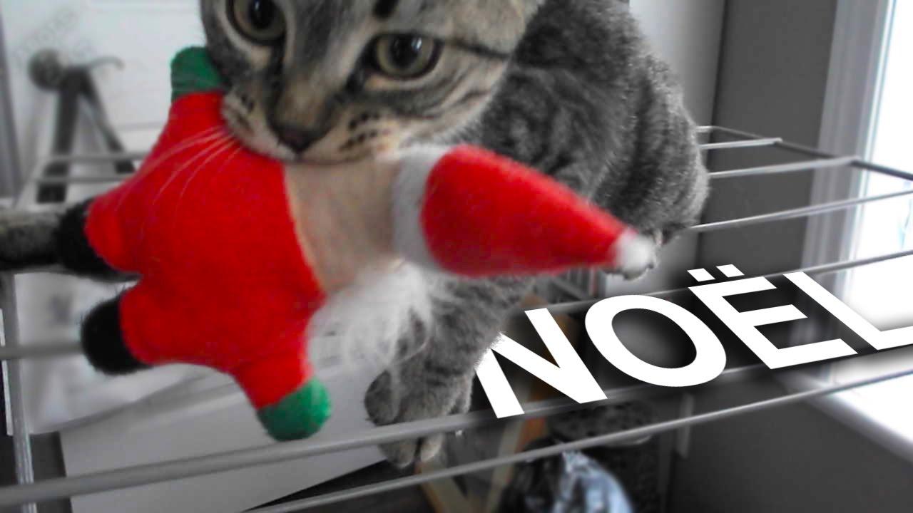 Le chat qui a kidnapp le p re no l parole de chat youtube - Image de chat de noel ...