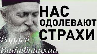 ПОЧЕМУ нас одолевают СТРАХИ? Фаддей Витовницкий